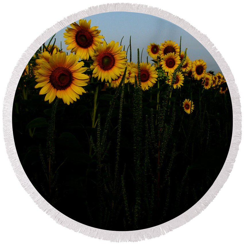 Sunflowers Round Beach Towel featuring the photograph Guide Me by Amanda Barcon