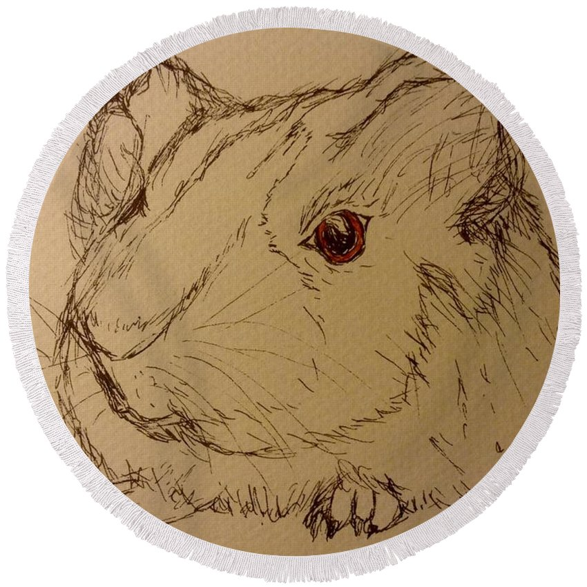 Guinea Pig Round Beach Towel featuring the drawing Guinea Pig by Nicole Porter