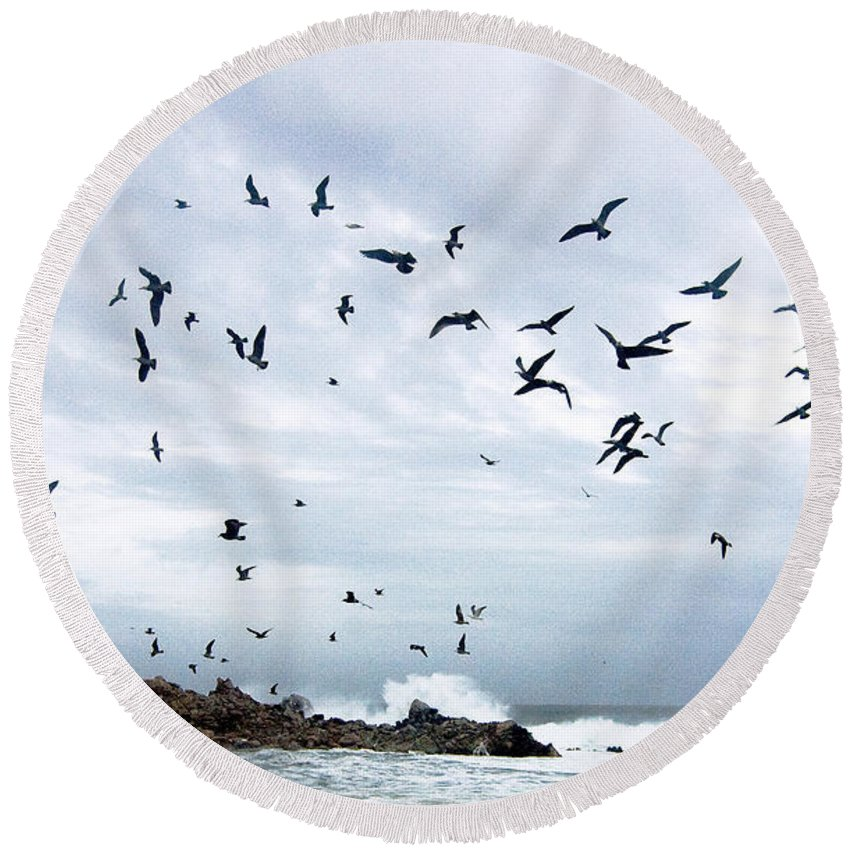 Coastal California Round Beach Towel featuring the photograph Gulls Of Carmel by Norman Andrus