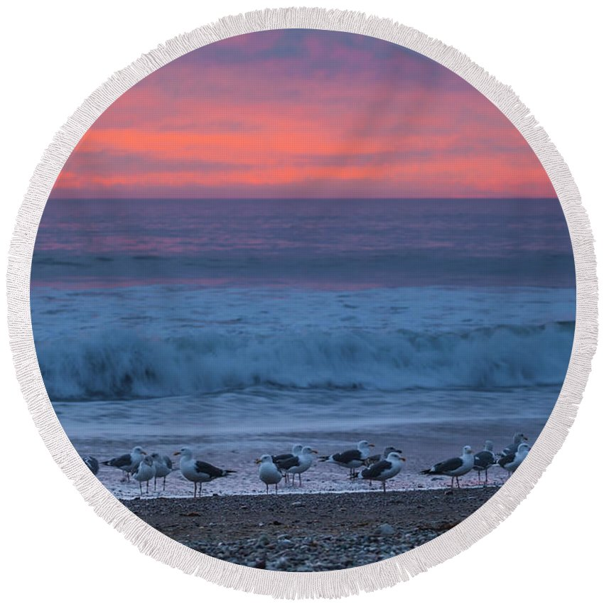 Seagulls Round Beach Towel featuring the photograph Gulls With Pink Sky by Sharon Foelz