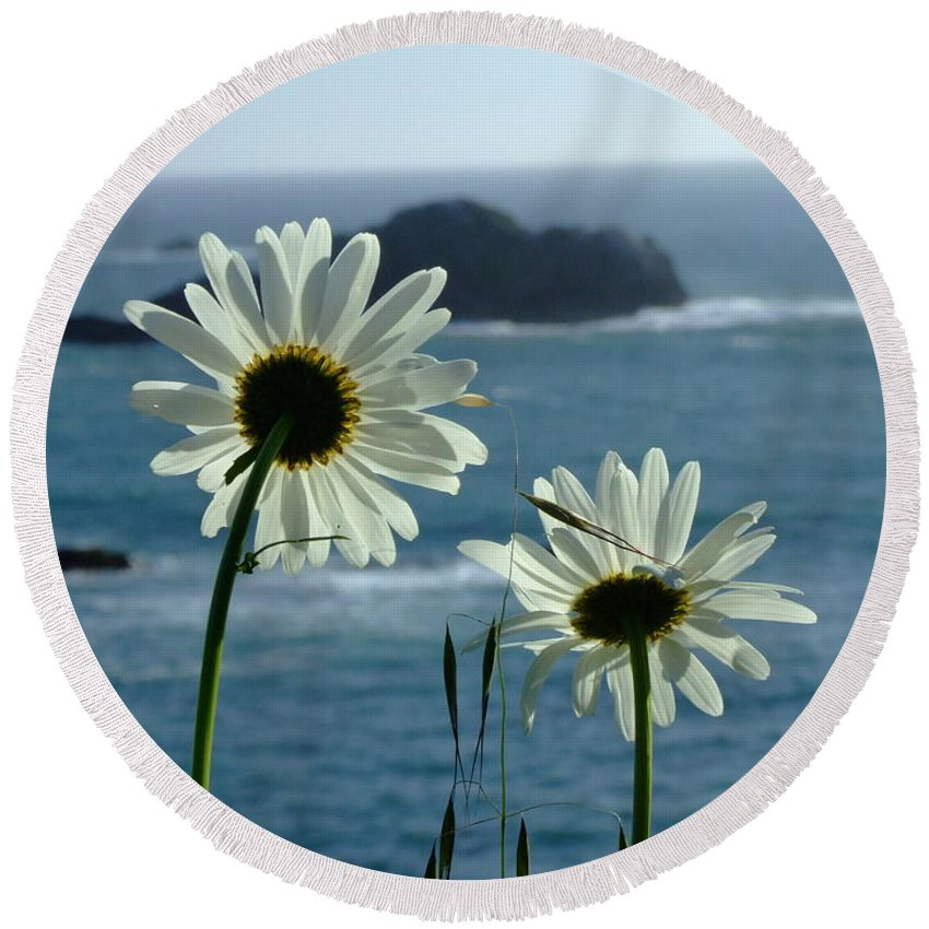Daisy Round Beach Towel featuring the photograph Happily Ever After by Donna Blackhall