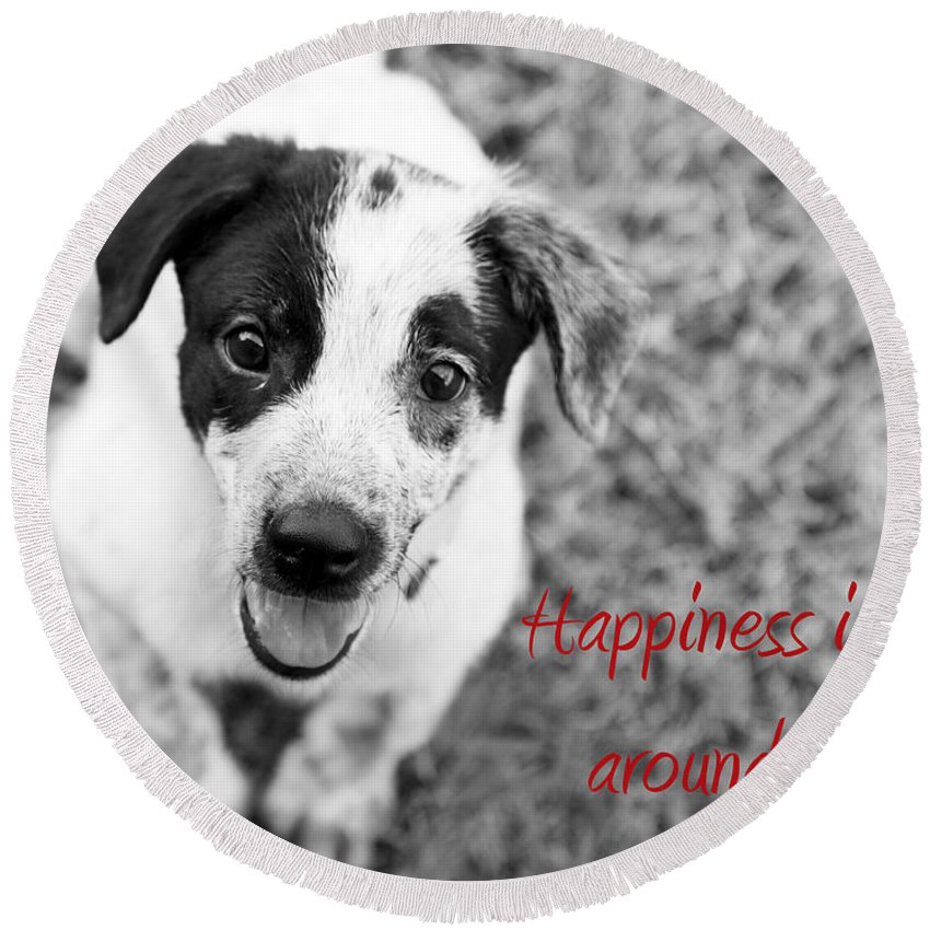 Puppy Round Beach Towel featuring the photograph Happiness Is All Around Me by Amanda Barcon