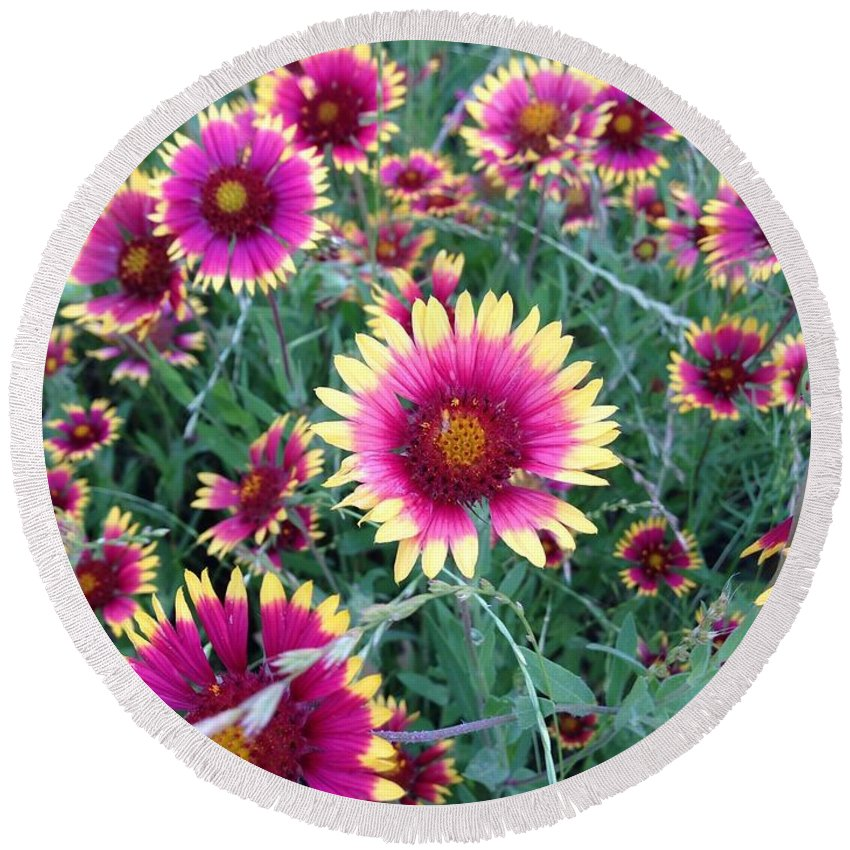 Flowers Round Beach Towel featuring the photograph Happiness by Marie Millard