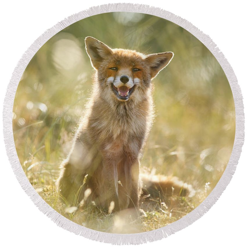 Fox Round Beach Towel featuring the photograph Happy Fox Is Happy by Roeselien Raimond