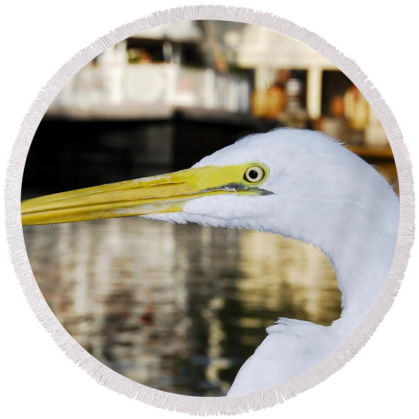 Egret Round Beach Towel featuring the photograph Harbor Egret by David Lee Thompson