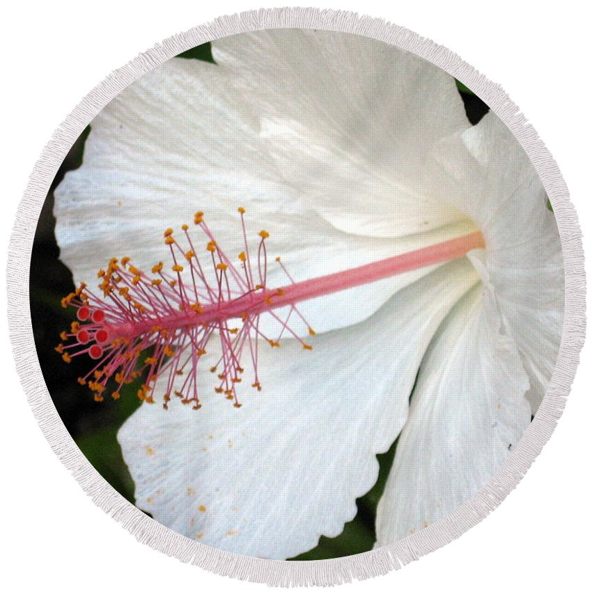 Hibiscus Round Beach Towel featuring the photograph Hawaiian Hibiscus 2 Photograph by Kimberly Walker