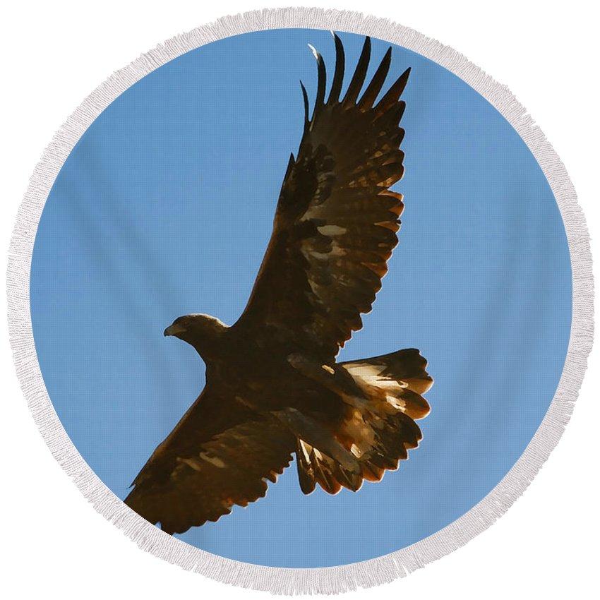 Hawk Round Beach Towel featuring the photograph Hawk In Flight by David Lee Thompson