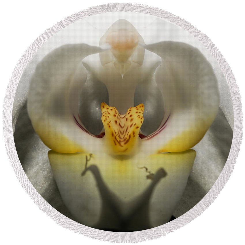 Heavenly Orchid Round Beach Towel featuring the photograph Heavenly Orchid by Ernie Echols