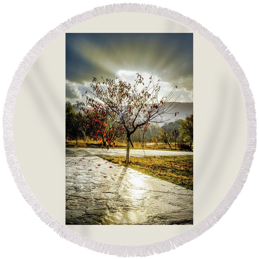 Tree Round Beach Towel featuring the photograph Heaven's Gate by Monika Garvalova