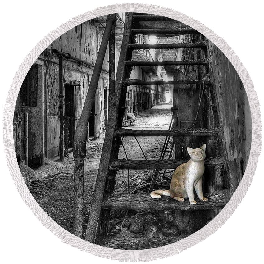 Abandoned Round Beach Towel featuring the photograph Here Kitty Kitty Kitty... by Evelina Kremsdorf