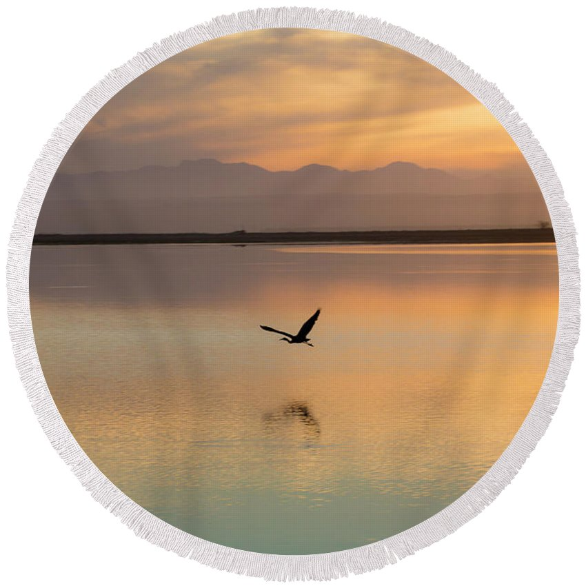 Heron Round Beach Towel featuring the photograph Heron at sunset by Sheila Smart Fine Art Photography