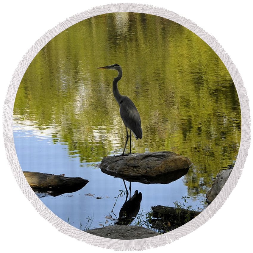 Heron Round Beach Towel featuring the photograph Heron By The Lake by David Lee Thompson
