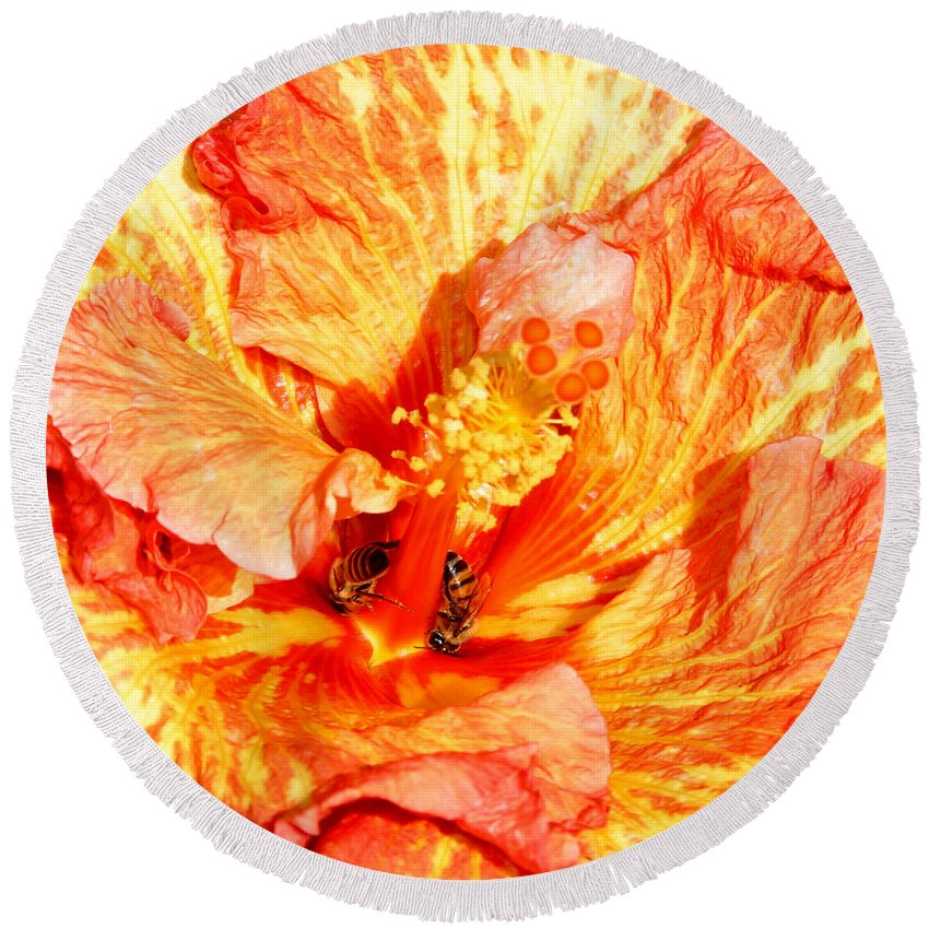 Bees Round Beach Towel featuring the photograph Hibiscus And Bees by Anthony Jones