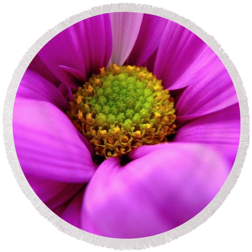 Flower Round Beach Towel featuring the photograph Hidden Inside by Rhonda Barrett