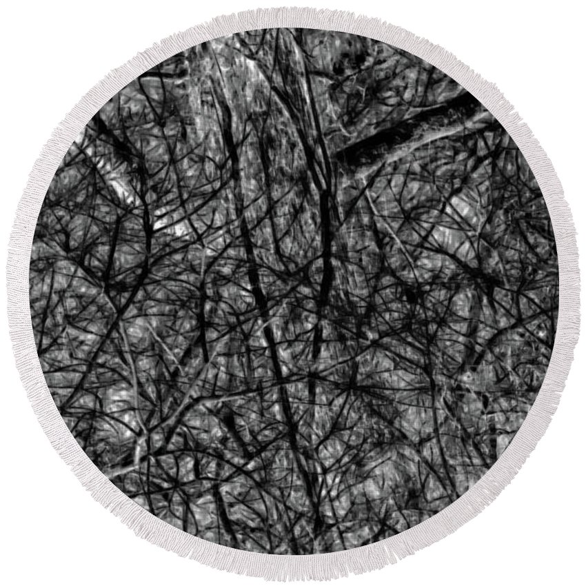 Black And White Photography Round Beach Towel featuring the photograph Hiding Behind Vines by Gina O'Brien