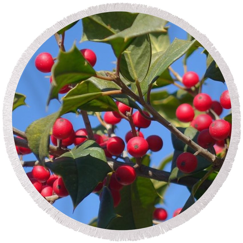 Holly Round Beach Towel featuring the photograph Holly Berries On A Wintry Day I by Rauno Joks