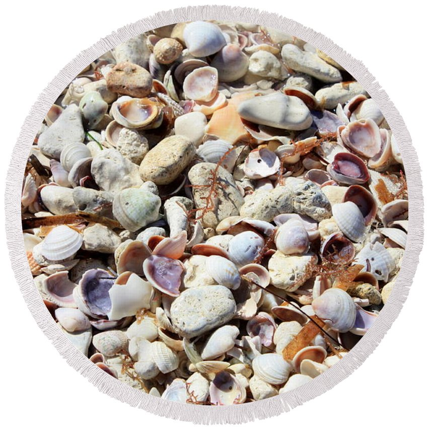 Shells Round Beach Towel featuring the photograph Honeymoon Island Shells by Carol Groenen