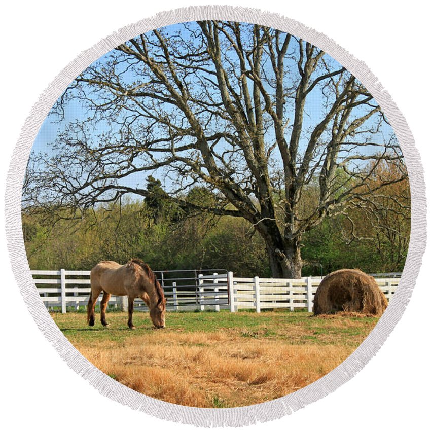 Landscape Round Beach Towel featuring the photograph Horse And Hay by Todd Blanchard