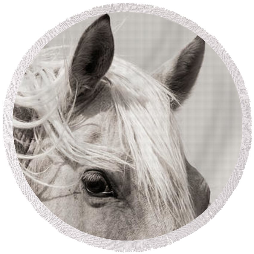 Round Beach Towel featuring the photograph Horse Eye by Kate Wiltshire
