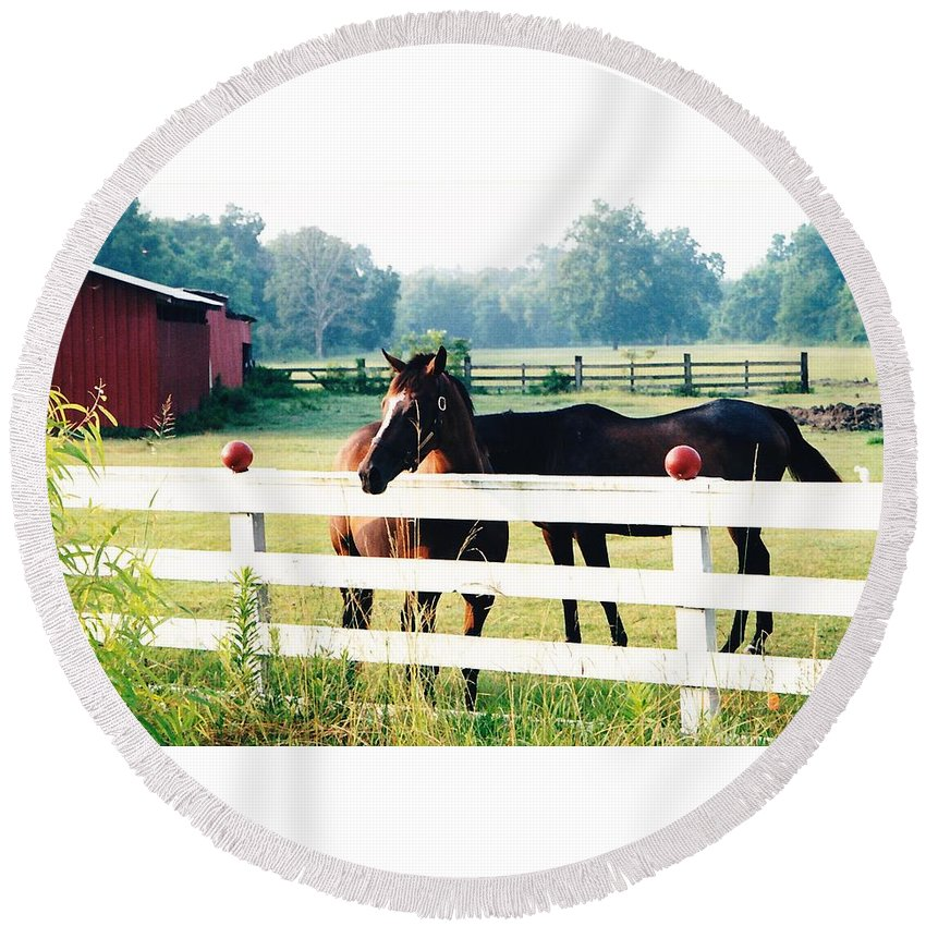 Horses Round Beach Towel featuring the photograph Horse Stable by Michelle Powell