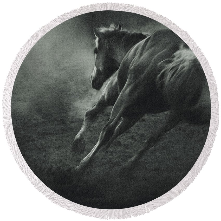 Equestrian Round Beach Towel featuring the photograph Horse Trotting In Morning Fog by Dimitar Hristov