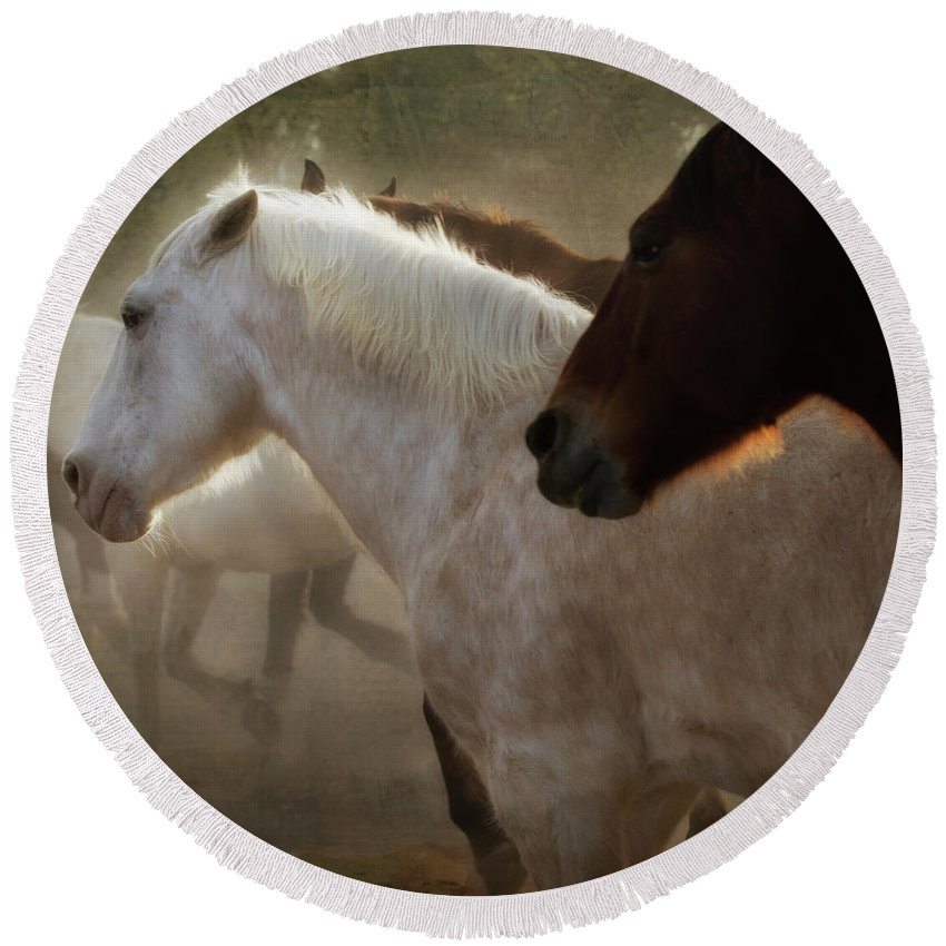 Horses Round Beach Towel featuring the photograph Horses-02 by Susan Kordish
