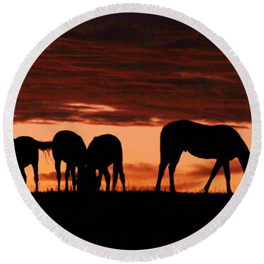 Horses Round Beach Towel featuring the photograph Horses At Sunset by Tina Meador
