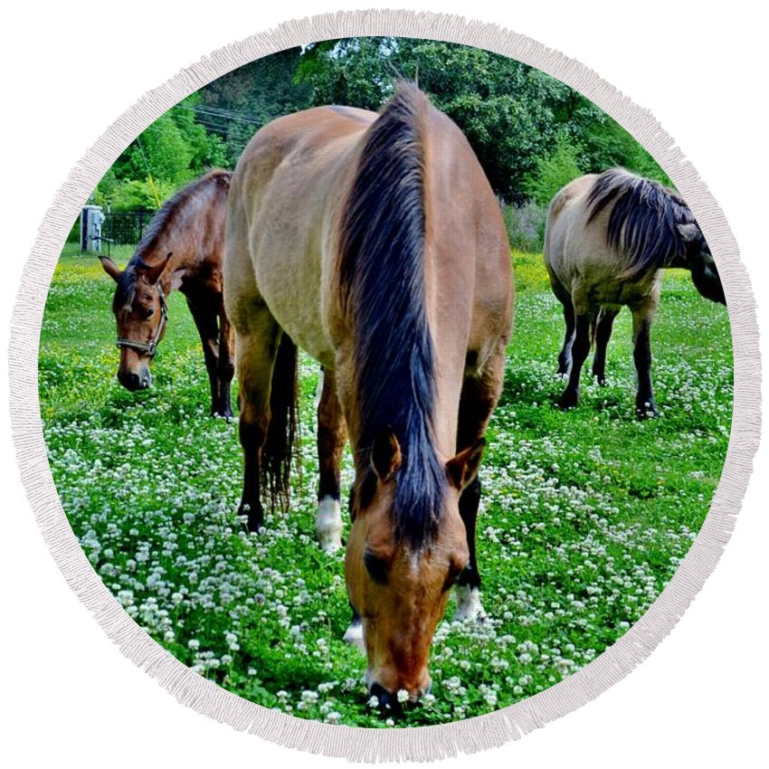 Horses Round Beach Towel featuring the photograph Horses In The Meadow by Eileen Brymer