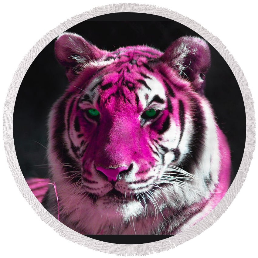 Hot Pink Tiger Round Beach Towel featuring the photograph Hot Pink Tiger by Rebecca Margraf