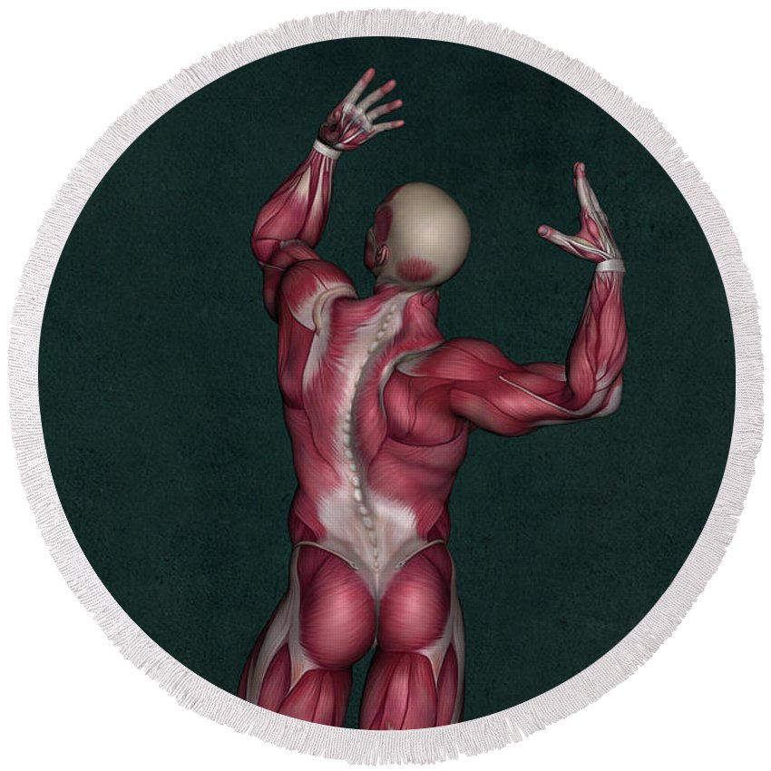 Human Anatomy Round Beach Towel featuring the mixed media Human Anatomy 20 by Solomon Barroa
