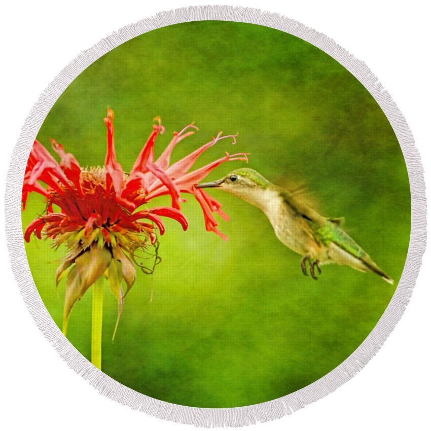 Recent Round Beach Towel featuring the photograph Hummingbird Bee Balm And Textures by Geraldine Scull