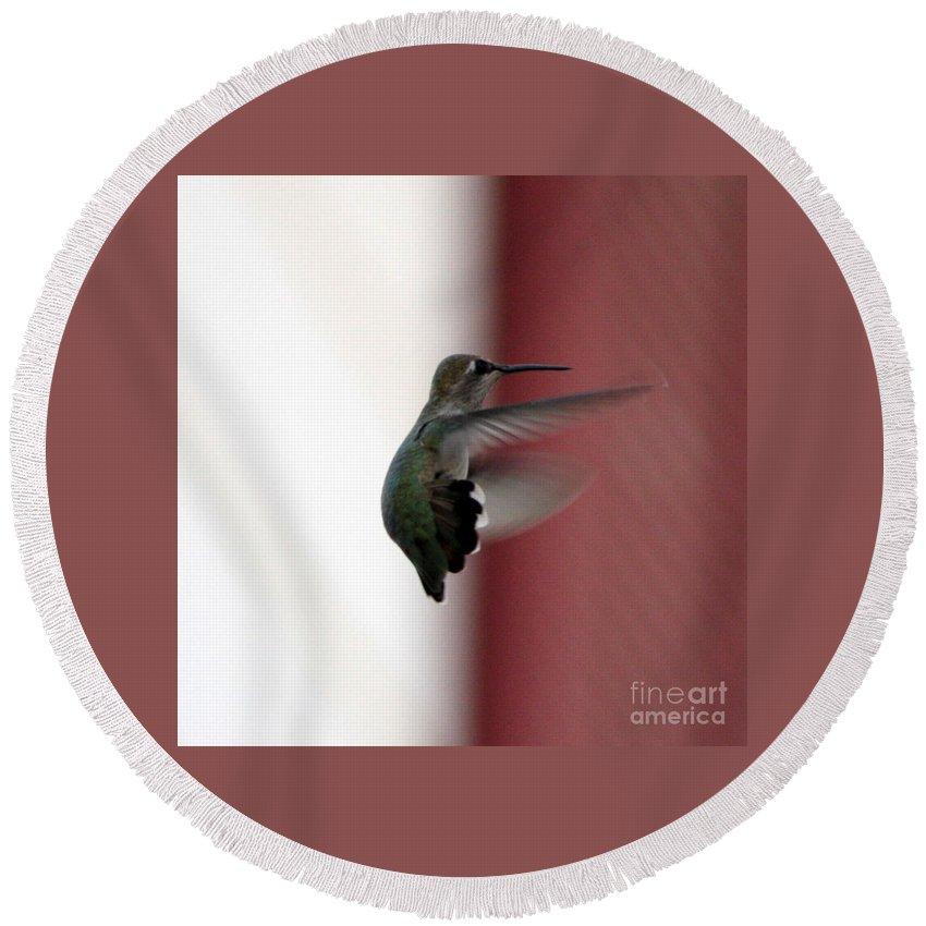 Hummingbird Round Beach Towel featuring the photograph Hummingbird Changing Course by Carol Groenen