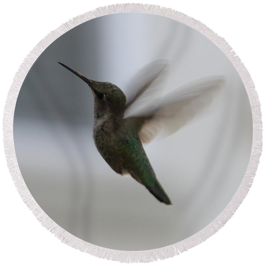 Hummingbird Round Beach Towel featuring the photograph Hummingbird In Flight by Carol Groenen