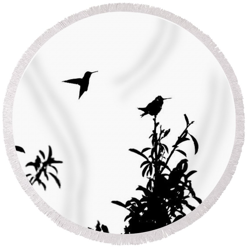 Bird Round Beach Towel featuring the photograph Hummingbird Silhouettes by Eric Strickland
