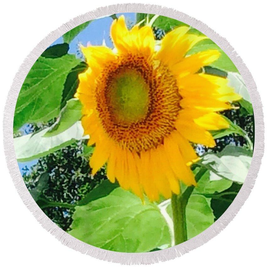 Sunflower Round Beach Towel featuring the photograph Humongous Sunflower by Sharon Allen