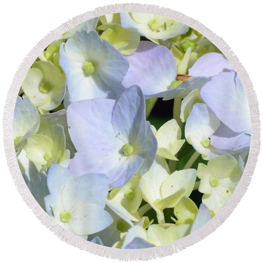 Gardening Round Beach Towel featuring the photograph Hydrangea Two by Debra Bender