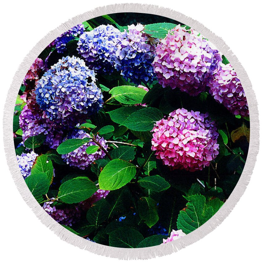 Flowers Round Beach Towel featuring the photograph Hydrangeas by Nancy Mueller