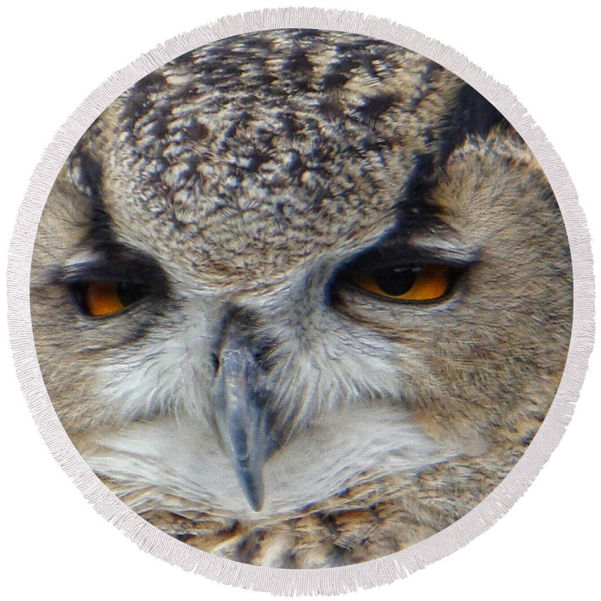 Owl Round Beach Towel featuring the photograph I Ate Too Much by Donna Blackhall
