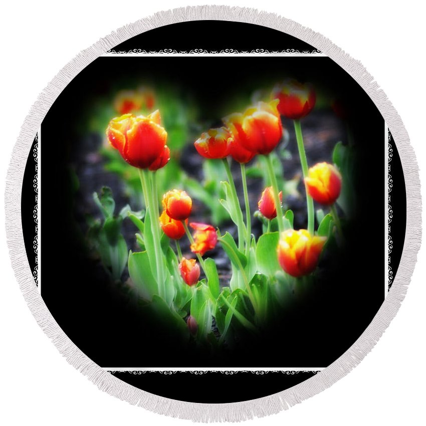 Heart Round Beach Towel featuring the photograph I Heart Tulips - Black Background by Bill Cannon