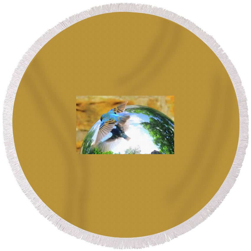 Bird Round Beach Towel featuring the photograph I Love Me by David Arment