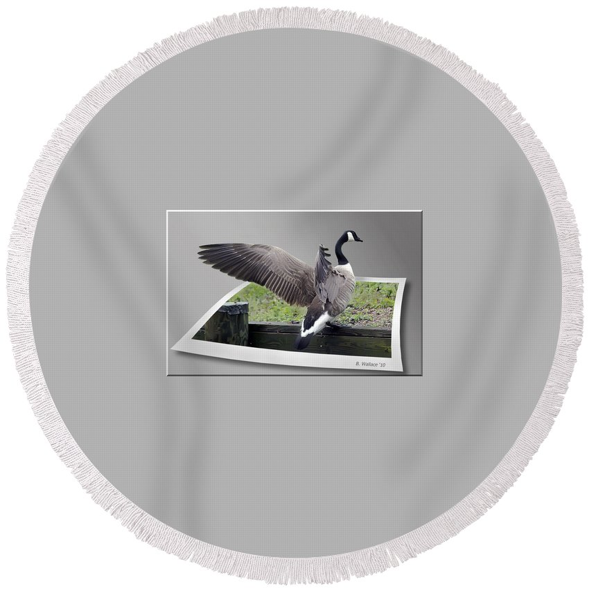 2d Round Beach Towel featuring the photograph I Made It by Brian Wallace
