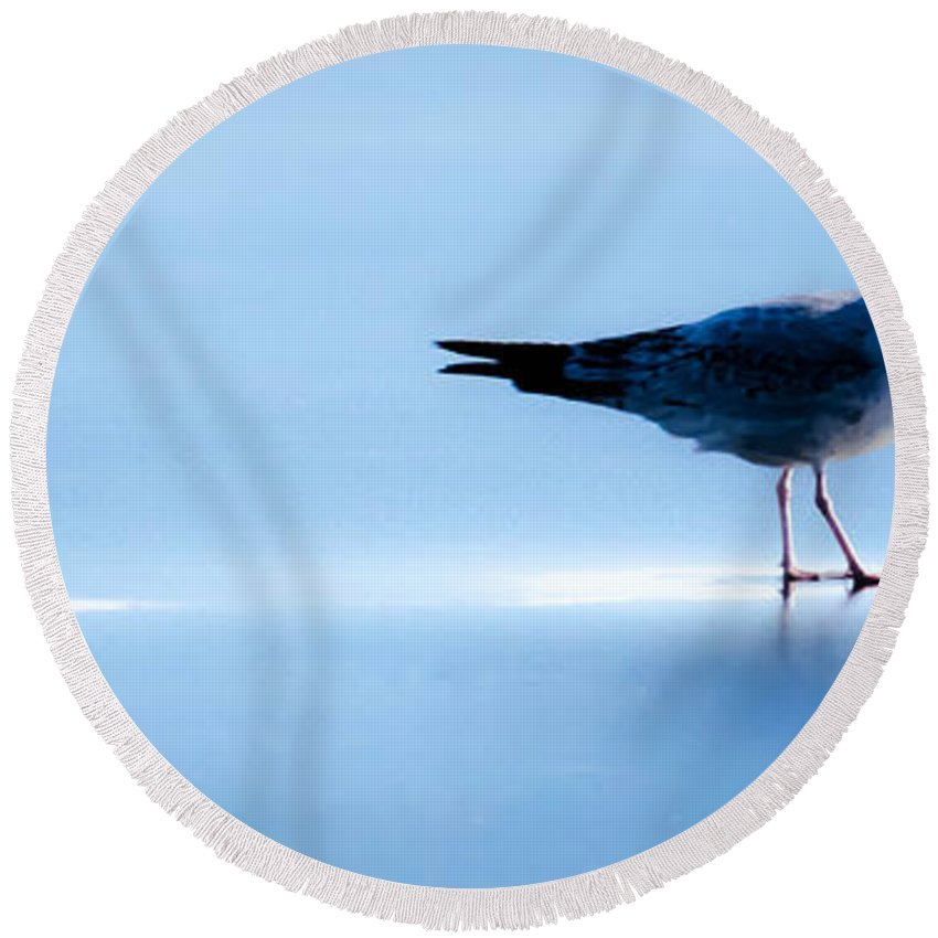 Gull Round Beach Towel featuring the photograph Ice Walk by Dave Taylor