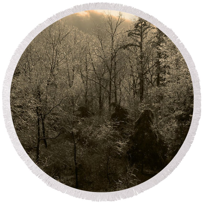 Icy Round Beach Towel featuring the photograph Icy Trees In Sepia by Scott Sanders