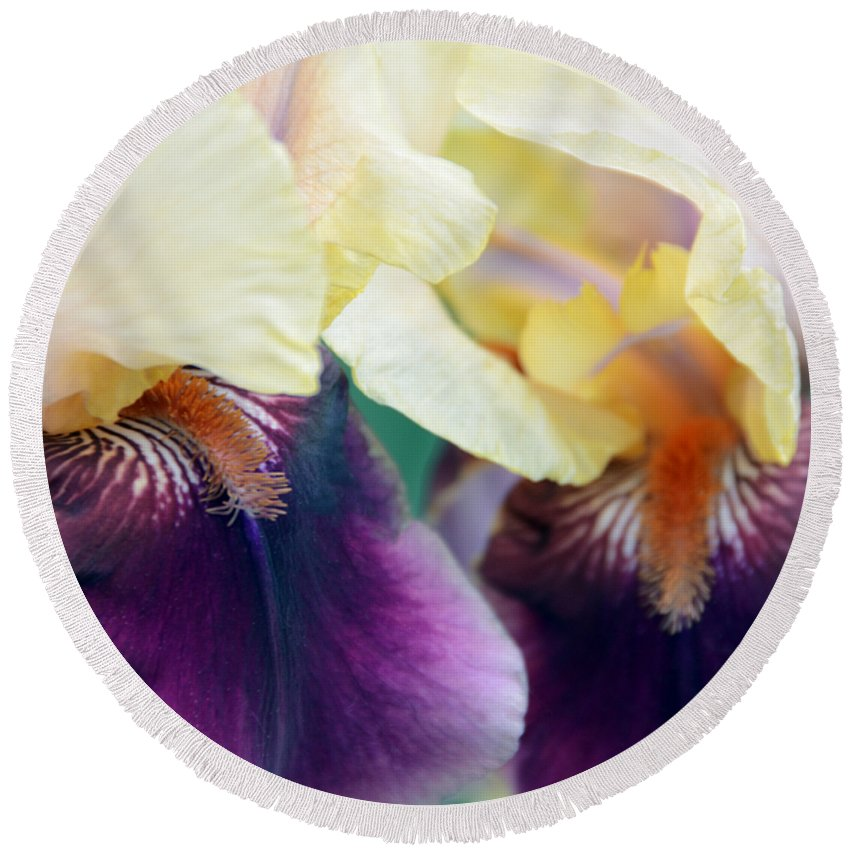 Iris Round Beach Towel featuring the photograph In Love With Iris by Angelina Tamez