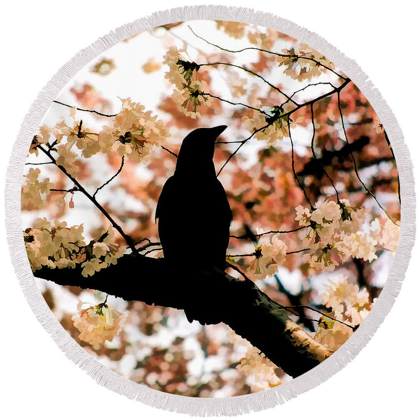 Tree Round Beach Towel featuring the photograph In The Cherry Tree by Mike Nellums