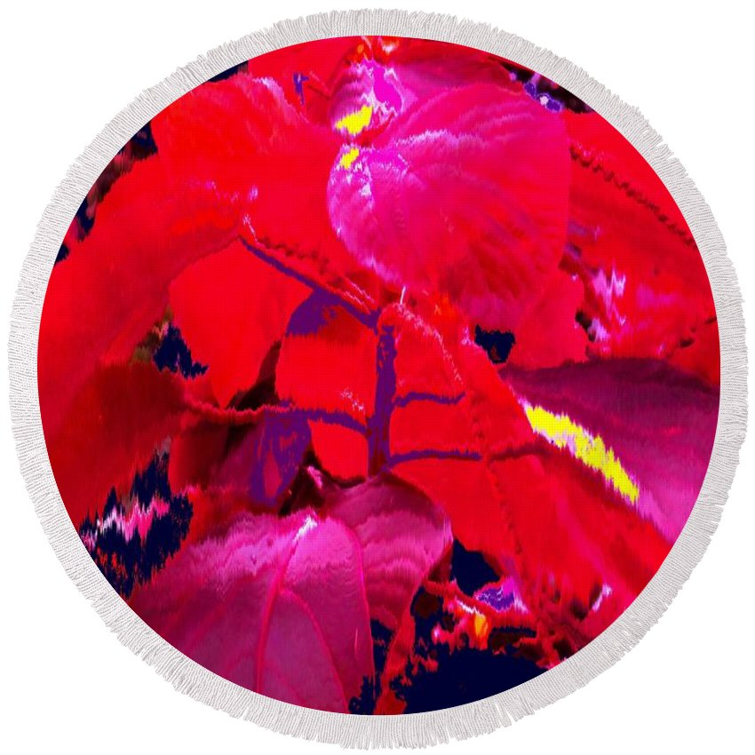 Abstract Round Beach Towel featuring the photograph In The Jungle by Ian MacDonald