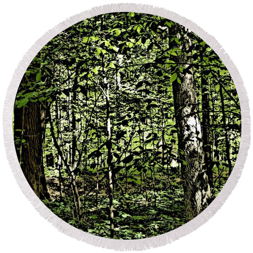 Landscape Round Beach Towel featuring the photograph In The Woods Wc by David Lane