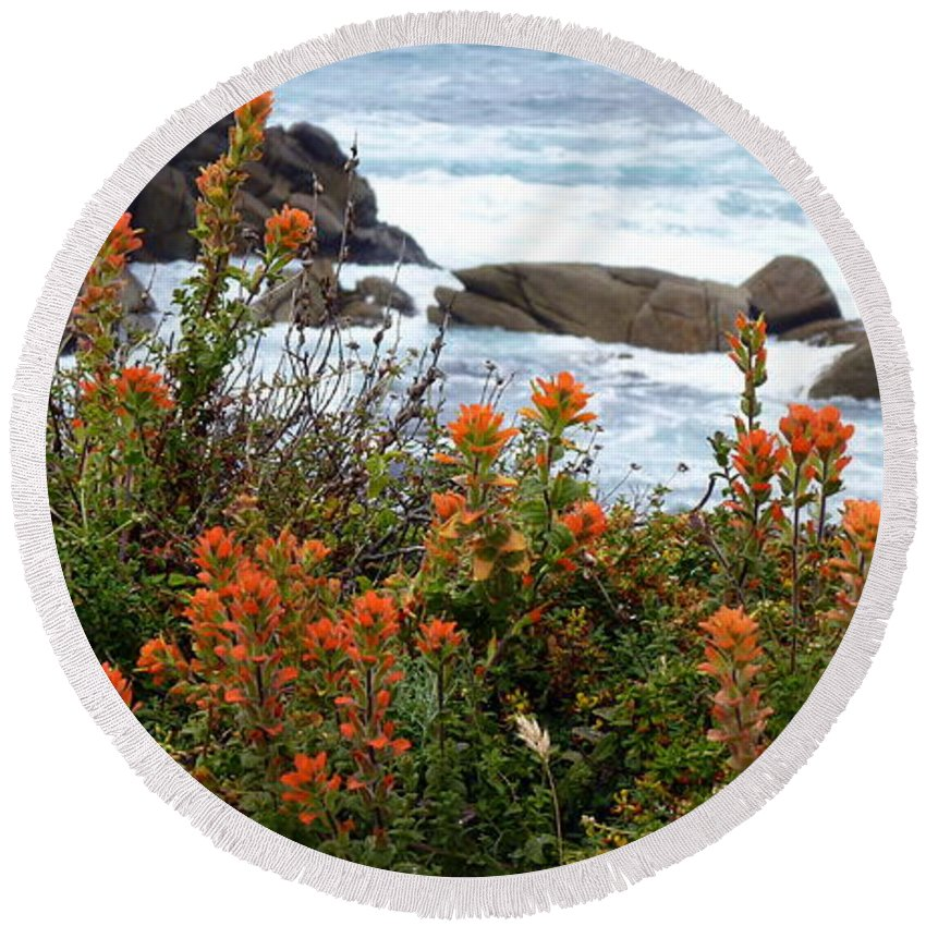 Indian Paintbrush Round Beach Towel featuring the photograph Indian Paintbrush At Point Lobos by Carla Parris