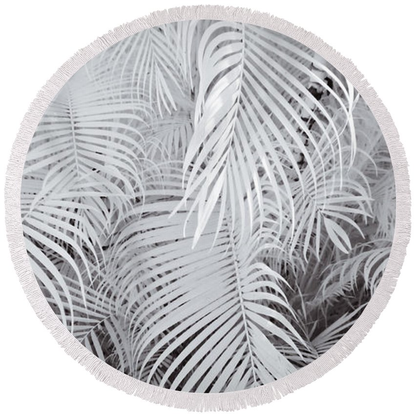 3scape Photos Round Beach Towel featuring the photograph Infrared Palm Abstract by Adam Romanowicz