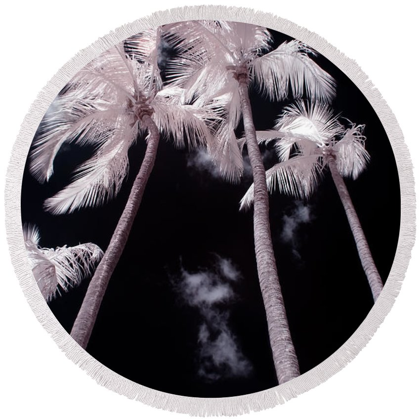 3scape Photos Round Beach Towel featuring the photograph Infrared Palm Trees by Adam Romanowicz